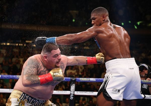 Anthony Joshua knocks down Andy Ruiz Jr in the third round during their IBF/WBA/WBO heavyweight title fight at Madison Square Garden on June 01, 2019 in New York City. PHOTO | AFP